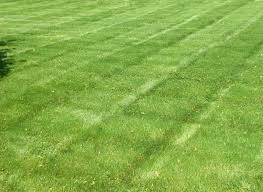 lawn care clarksville tn